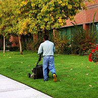 Commercial Lawncare